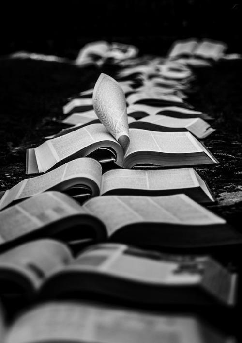 books-reading-read