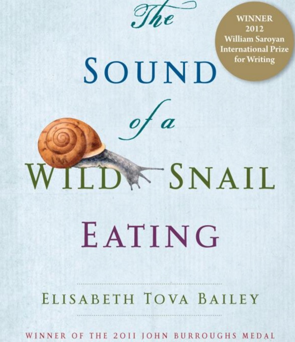 snail-elizabeth-tova-bailey