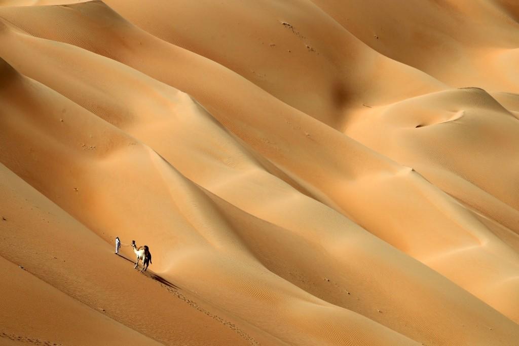 camel-hameen-desert-emirati
